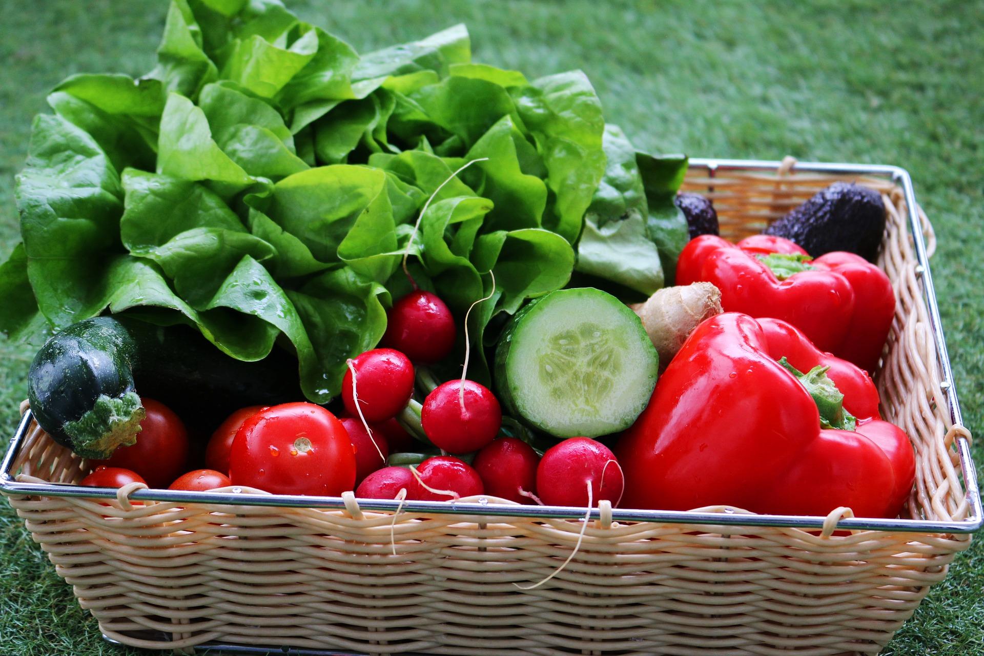 Vitamine Gemuese Salat